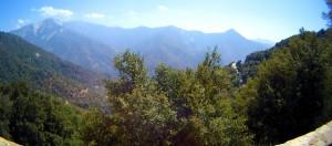 Sierra Nevadas from road